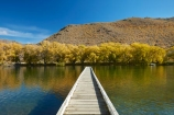 autuminal;autumn;autumn-colour;autumn-colours;autumnal;color;colors;colour;colours;deciduous;dock;docks;fall;gold;golden;jetties;jetty;lake;Lake-Benmore;lakes;leaf;leaves;N.Z.;New-Zealand;North-Otago;NZ;Otago;pier;piers;quay;quays;S.I.;Sailors-Cutting;Sailors-Cutting;season;seasonal;seasons;SI;South-Island;Sth-Is;Sth-Is.;tree;trees;Waitaki;Waitaki-District;Waitaki-Region;Waitaki-Valley;waterside;wharf;wharfes;wharves;willow;willow-tree;willow-trees;willows;yellow