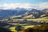 agricultural;agriculture;country;countryside;East-Otago;farm;farming;farmland;farms;field;fields;gorse;Kakanui-Mountains;meadow;meadows;N.Z.;New-Zealand;North-Otago;noxious-plant;noxious-plants;noxious-weed;noxious-weeds;NZ;paddock;paddocks;pasture;pastures;pest;Razorback-Range;rural;S.I.;SI;South-Is;South-Island;Waitaki-District;Waitaki-Region;weed;winter