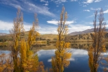 autuminal;autumn;autumn-colour;autumn-colours;autumnal;calm;color;colors;colour;colours;deciduous;fall;lake;Lake-Hayes;lakes;leaf;leaves;N.Z.;New-Zealand;NZ;Otago;placid;poplar-tree;poplar-trees;Queenstown;quiet;reflection;reflections;S.I.;season;seasonal;seasons;serene;SI;smooth;South-Is;South-Is.;South-Island;Southern-Lakes;Southern-Lakes-District;Southern-Lakes-Region;still;tranquil;tree;trees;water;willow-tree;willow-trees
