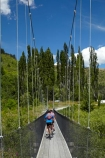 Arrow-River;Arrow-River-Bridges-Ride;Arrowtown;Arrowtown-cycle-track;Arrowtown-cycle-trail;bicycle;bicycles;bike;bike-track;bike-tracks;bike-trail;bike-trails;bikes;biking;bridge;bridges;cycle;cycle-track;cycle-tracks;cycle-trail;cycle-trails;cycler;cyclers;cycles;cycling;cyclist;cyclists;foot-bridge;foot-bridges;footbridge;footbridges;green;leisure;mountain-bike;mountain-biker;mountain-bikers;mountain-bikes;mtn-bike;mtn-biker;mtn-bikers;mtn-bikes;N.Z.;New-Zealand;NZ;Otago;pedestrian-bridge;pedestrian-bridges;people;person;poplar;poplar-tree;poplar-trees;poplars;push-bike;push-bikes;push_bike;push_bikes;pushbike;pushbikes;Queenstown-Bike-Trail;Queenstown-Cycle-Trail;Queenstown-Trail;Queenstown-Trails;recreation;S.I.;SI;South-Is;South-Island;Southern-Discoveries-Bridge;Southern-Lakes;Southern-Lakes-District;Southern-Lakes-Region;Sth-Is;suspension-bridge;suspension-bridges;swing-bridge;swing-bridges;tourism;tourist;tourists;tree;trees;wire-bridge;wire-bridges