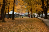 Arrowtown;autuminal;autumn;autumn-colour;autumn-colours;autumnal;building;buildings;color;colors;colour;colours;deciduous;fall;gold;golden;heritage;historic;historic-building;historic-buildings;historical;historical-building;historical-buildings;history;leaf;leaves;library;N.Z.;New-Zealand;NZ;old;Otago;Queenstown;season;seasonal;seasons;South-Is;South-Island;Sth-Is;tradition;traditional;tree;trees;yellow