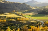 agricultural;agriculture;arrow-junction;arrowtown;autuminal;autumn;autumnal;bend;bends;central-otago;color;colors;colour;colours;corner;corners;country;countryside;deciduous;driving;fall;farm;farming;farmland;farms;field;fields;highway;highways;horticulture;leaf;leaves;meadow;meadows;new-zealand;open-road;open-roads;paddock;paddocks;pasture;pastures;poplar;poplar-tree;poplar-trees;poplars;queenstown;road;road-trip;roads;rural;south-island;straight;transport;transportation;travel;traveling;travelling;tree;trees;trip;wakatipu-basin