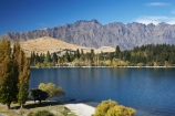autuminal;autumn;autumn-colour;autumn-colours;autumnal;color;colors;colour;colours;deciduous;fall;lake;Lake-Wakatipu;lakes;leaf;leaves;mountain;mountains;N.Z.;New-Zealand;NZ;oplar;Otago;poplar;poplar-tree;poplar-trees;poplars;Queenstown;S.I.;season;seasonal;seasons;SI;South-Is.;South-Island;Southern-Lakes;Southern-Lakes-District;Southern-Lakes-Region;The-Remarkables;tree;trees;willow-tree;willow-trees;willows