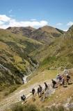 hike;hiker;hikers;hiking;hiking-track;hiking-tracks;Moonlight-Creek;Moonlight-Track;N.Z.;New-Zealand;NZ;Otago;Queenstown;S.I.;SI;South-Is.;South-Island;Southern-Lakes;Southern-Lakes-District;Southern-Lakes-Region;summer;tramp;tramper;trampers;tramping;tramping-tack;tramping-tracks;trek;treker;trekers;treking;trekker;trekkers;trekking;walk;walker;walkers;walking;walking-track;walking-tracks