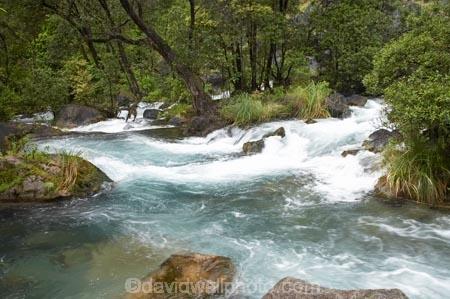 cascade;cascades;Eastern-Bay-of-Plenty;Kawerau;Lake-Tarawera-Scenic-Reserve;N.I.;N.Z.;New-Zealand;NI;North-Is;North-Island;NZ;rapid;rapids;Tarawera-River;white-water;white_water;whitewater