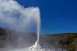 Bay-of-Plenty-Region;fountain;fountains;geothermal;geothermal-activity;geyser;geysers;hot;hot-water;lady-knox-geyser;N.I.;N.Z.;New-Zealand;NI;North-Is;North-Island;Nth-Is;NZ;pressure;Rotorua;steam;thermal;thermal-activity;thermal-area;volcanic;volcanic-activity;Wai_o_tapu;Wai_o_tapu-Reserve;Wai_o_tapu-Thermal-Reserve;Wai_o_tapu-Thermal-Wonderland;Waiotapu;Waiotapu-Reserve;Waiotapu-Thermal-Reserve;Waiotapu-Thermal-Wonderland;water