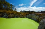 Bay-of-Plenty-Region;Devils-Bath;Devils-Bath;geothermal;geothermal-activity;green;green-water;N.I.;N.Z.;nature;New-Zealand;NI;North-Is;North-Island;Nth-Is;NZ;Rotorua;thermal;thermal-activity;thermal-area;tourism;tourist;tourists;travel;volcanic;volcanic-activity;Wai_o_tapu;Wai_o_tapu-Reserve;Wai_o_tapu-Thermal-Reserve;Wai_o_tapu-Thermal-Wonderland;Waiotapu;Waiotapu-Reserve;Waiotapu-Thermal-Reserve;Waiotapu-Thermal-Wonderland