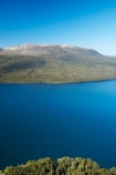 aerial;aerial-image;aerial-images;aerial-photo;aerial-photograph;aerial-photographs;aerial-photography;aerial-photos;aerial-view;aerial-views;aerials;Bay-of-Plenty-Region;bush;forest;forests;lake;Lake-Tarawera;lakes;Mount-Tarawera;Mt-Tarawera;N.I.;N.Z.;native-bush;native-forest;native-forests;native-tree;native-trees;native-woods;natural;nature;New-Zealand;NI;North-Is;North-Island;Nth-Is;NZ;Rotorua;tree;trees;volcanic;volcano;volcanoes;wood;woods