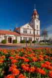 Bay-of-Plenty-Region;building;buildings;clock-tower;clock-towers;clocktower;clocktowers;flower;flowers;garden;gardens;heritage;historic;historic-building;historic-buildings;historical;historical-building;historical-buildings;history;information-centre;isite;isite-visitor-centre;N.I.;N.Z.;New-Zealand;NI;North-Is;North-Island;Nth-Is;NZ;old;old-post-office;orange;orange-flower;orange-flowers;Post-Office;Rotorua;Rotorua-information-centre;tradition;traditional;visitor-centre;visitor-information-centre