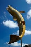 art;art-work;art-works;big-fish;big-statue;big-trout;brown-trout;fish;fishes;Giant-Trout-Statue;Gore;N.Z.;New-Zealand;NZ;public-art;public-art-work;public-art-works;public-sculpture;public-sculptures;S.I.;sculpture;sculptures;SI;South-Is;South-Island;Southland;statue;statues;Sth-Is.;Trout-Statue