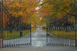 autuminal;autumn;autumn-colour;autumn-colours;autumnal;avenue;avenues;color;colors;colour;colours;deciduous;fall;gate;gates;gateway;gateways;gold;golden;Invercargill;island;leaf;leaves;municipal;N.Z.;new;new-zealand;NZ;park;parks;Queens-Park;Queens-Pk;queens;Queens-Park;Queens-Pk;S.I.;season;seasonal;seasons;SI;south;South-Is;South-Island;Southland;Sth-Is;Sth-Is.;tree;trees;yellow;zealand