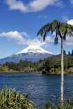 Lake-Mangamahoe;mountain;mountains;volcano;volcanoes;snow;winter;Mount-Taranaki;Mount-Egmont;taranaki;egmont;mt-taranaki;mt-egmont;mt.-taranaki;mt.-egmont;new-zealand;lakes;fern;ferns;tree;fern;tree-ferns