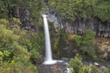 cascade;cascades;creek;creeks;Dawson-Falls;Egmont-N.P.;Egmont-National-Park;Egmont-NP;falls;Mount-Egmont;Mount-Taranaki;Mount-Taranaki-Egmont;Mt-Egmont;Mt-Taranaki;Mt-Taranaki-Egmont;Mt.-Egmont;Mt.-Taranaki;Mt.-Taranaki-Egmont;N.I.;N.Z.;natural;nature;New-Zealand;NI;North-Is;North-Is.;North-Island;NZ;scene;scenic;stream;streams;Taranaki;water;water-fall;water-falls;waterfall;waterfalls;wet