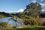 cyathea;fern;ferns;frond;fronds;lake;Lake-Mangamahoe;lakes;Mount-Egmont;Mount-Taranaki;Mount-Taranaki-Egmont;Mountain;mountainous;mountains;mt;Mt-Egmont;Mt-Taranaki;Mt-Taranaki-Egmont;mt.;Mt.-Egmont;Mt.-Taranaki;Mt.-Taranaki-Egmont;N.I.;N.Z.;New-Zealand;NI;North-Is;North-Is.;North-Island;NZ;picnic-area;picnic-areas;picnic-ground;picnic-grounds;picnic-spot;picnic-spots;plant;plants;ponga;pongas;punga;pungas;season;seasonal;seasons;snow;Taranaki;tree-fern;tree-ferns;volcanic;volcano;volcanoes;winter