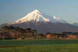 agricultural;agriculture;country;countryside;dairy-farm;dairy-farming;dairy-farms;farm;farming;farmland;farms;field;fields;meadow;meadows;Mount-Egmont;Mount-Taranaki;Mount-Taranaki-Egmont;Mountain;mountainous;mountains;mt;Mt-Egmont;Mt-Taranaki;Mt-Taranaki-Egmont;mt.;Mt.-Egmont;Mt.-Taranaki;Mt.-Taranaki-Egmont;N.I.;N.Z.;New-Zealand;NI;North-Is;North-Is.;North-Island;NZ;Opunake;paddock;paddocks;pasture;pastures;rural;season;seasonal;seasons;snow;Taranaki;volcanic;volcano;volcanoes;winter