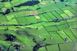 agriculture;cow;cows;dairy;farm;farming;farmland;farms;fence;fenceline;fences;field;fields;grass;green;hedgerow;hedgerows;lamb;lambs;lush;meadow;meadows;paddock;paddocks;pasture;pastures;plain;plains;rural;sheep;spring;verdant