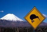 cone;kiwis;mountain;peak;road-sign;sign;snow;snow-cap;snow-capped;snow-caps;snow_cap;snow_capped;snow_caps;volcanic;volcano
