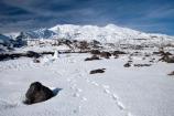 alpine;central-plateau;cold;foot-print;foot-prints;foot-step;foot-steps;foot-trail;foot-trails;footprint;footprints;footstep;footsteps;freeze;freezing;Mount-Ruapehu;Mountain;mountainous;mountains;mt;Mt-Ruapehu;mt.;Mt.-Ruapehu;N.I.;N.Z.;New-Zealand;NI;North-Island;NZ;ruapehu-district;Scoria-Flat;Scoria-Flats;season;seasonal;seasons;snow;snowing;snowy;Tongariro-N.P.;Tongariro-National-Park;Tongariro-NP;track;tracks;trail;trails;volcanic;volcanic-plateau;volcano;volcanoes;white;winter;wintery;World-Heritage-Area;World-Heritage-Areas;World-Heritage-Site;World-Heritage-Sites
