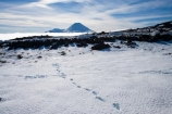 alpine;central-plateau;cold;foot-print;foot-prints;foot-step;foot-steps;foot-trail;foot-trails;footprint;footprints;footstep;footsteps;freeze;freezing;Mount-Ngauruhoe;Mountain;mountainous;mountains;mt;Mt-Ngauruhoe;Mt-Ruapehu;mt.;Mt.-Ngauruhoe;N.I.;N.Z.;New-Zealand;NI;North-Island;NZ;ruapehu-district;Scoria-Flat;Scoria-Flats;season;seasonal;seasons;snow;snowing;snowy;Tongariro-N.P.;Tongariro-National-Park;Tongariro-NP;track;tracks;trail;trails;volcanic;volcanic-plateau;volcano;volcanoes;white;winter;wintery;World-Heritage-Area;World-Heritage-Areas;World-Heritage-Site;World-Heritage-Sites