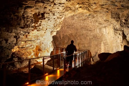 cave;cavern;caverns;caves;caving;geographic;geographical;geography;geological-feature;geological-features;geological-formation;geological-formations;King-Country;limestone-cave;limestone-caves;N.I.;N.Z.;nature;New-Zealand;NI;North-Island;NZ;people;person;potholing;Ruakuri-Cave;Ruakuri-Caves;spelunk;spelunking;stalactite;stalactites;stalagmite;stalagmites;tourism;tourist;tourists;travel;under-ground;under_ground;underground;Waikato;Waitomo;Waitomo-Cave;Waitomo-Caves