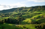 agricultural;agriculture;country;countryside;farm;farming;farmland;farms;field;fields;green;King-Country;Mapara-Stream;meadow;meadows;N.I.;N.Z.;New-Zealand;NI;North-Island;NZ;paddock;paddocks;pasture;pastures;rural;Te-Kuiti;Waikato-Region