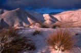 cold;country;countryside;dusk;freeze;freezing;grassland;grasslands;high;highcountry;mountain;mountains;snow;sunset;tussock;tussocks;winter