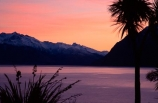pink-tint;pink;colour;peach-tint;peach;purple-tint;tint;cabbage-tree;cabbage-trees;silhouette;silhouettes;silhouetted;lake;lake-hawea;peaceful;calm;tranquil;tranquility;red-sky;sunrise;sunset;dusk;dawn