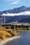 autuminal;autumn;autumn-colour;autumn-colours;autumnal;Central-Otago;cloud;clouds;color;colors;colour;colours;deciduous;End-Peak;fall;Glendhu-Bay;Harris-Mountains;lake;Lake-Wanaka;lakes;leaf;leaves;mist;mists;misty;N.Z.;New-Zealand;NZ;Otago;S.I.;season;seasonal;seasons;shoreline;shorelines;SI;South-Island;Southern-Lakes;Southern-Lakes-District;Southern-Lakes-Region;tree;trees;Wanaka;water;willow;willow-tree;willow-trees;willows