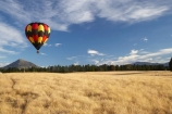 adventure;air;Air-Games;aviation;balloon;ballooning;balloons;flight;float;floating;fly;flying;horticulture;hot-air-balloon;hot-air-ballooning;hot-air-balloons;Hot_air-Balloon;hot_air-ballooning;hot_air-balloons;hotair-balloon;hotair-balloons;mid-air;mid_air;N.Z.;New-Zealand;New-Zealand-Air-Games;NZ;NZ-Air-Games;Otago;S.I.;SI;South-Island;sport;sports;transport;transportation;Wanaka