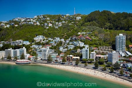 accommodation;aerial;aerial-image;aerial-images;aerial-photo;aerial-photograph;aerial-photographs;aerial-photography;aerial-photos;aerial-view;aerial-views;aerials;apartment;apartments;bay;bays;beach;beaches;Bluewater-Bar-amp;-Grill;Bluewater-Bar-and-Grill;Bluewater-Restaurant;cities;city;cityscape;cityscapes;coast;coastal;coastline;coastlines;coasts;condo;condominium;condominiums;condos;harbor;harbors;harbour;harbours;holiday;holiday-accommodation;Holidays;Mount-Victoria;Mt-Victoria;Mt.-Victoria;N.I.;N.Z.;New-Zealand;NI;North-Is;North-Island;NZ;Oriental-Bay;Oriental-Parade;Port-Nicholson;residential;residential-apartment;residential-apartments;residential-building;residential-buildings;sea;seas;seaside;shore;shoreline;shorelines;shores;summer;Te-Whanganui_a_Tara;water;waterside;Wellington;Wellington-Harbor;Wellington-Harbour