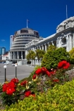 architectural;architecture;Beehive;building;buildings;capital;capitals;flower;flowers;government;governments;Grounds-of-Parliament;heritage;historic;historic-building;historic-buildings;historical;historical-building;historical-buildings;history;N.I.;N.Z.;New-Zealand;New-Zealand-Goverment;New-Zealand-Parliament;New-Zealand-Parliament-Buildings;NI;North-Is;North-Is.;North-Island;Nth-Is;NZ;NZ-Government;NZ-Parliament;old;Parliament;Parliament-Buildings;Parliament-Grounds;Parliament-House;pathway;pathways;rose;rose-garden;rose-gardens;roses;The-Beehive;tradition;traditional;Wellington