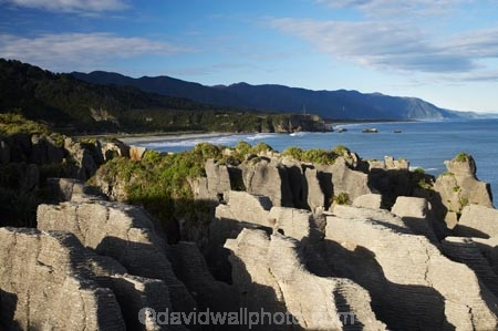 coast;coastal;coastline;coastlines;coasts;Dolomite-Point;erode;eroded;form;formation;formations;geological;geology;layer;layered;layers;N.Z.;national-park;national-parks;natural;New-Zealand;NZ;ocean;Pancake-Rocks;Paparoa-N.P.;Paparoa-National-Park;Paparoa-NP;pattern;patterns;Punakaiki;rock;rocks;S.I.;sea;sedementary;shore;shoreline;shorelines;shores;SI;south-island;Tasman-Sea;texture;textures;tide;water;weathered;West-Coast;westland