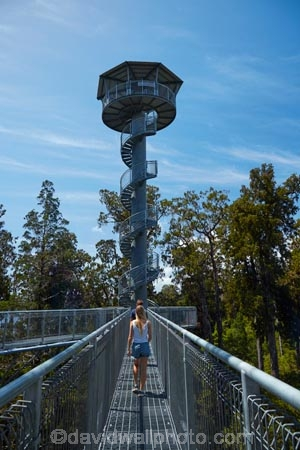 aerial-walkway;aerial-walkways;aerials-walkways;bridge;bridges;bush;canopy;canopy-walk;eco-tourism;ecotourism;elevated-walkway;elevated-walkways;engineering;female;females;forest;forest-canopy;forests;girl;girls;high;high-up;Hokitika;lush;luxuriant;M.R.;model-release;model-released;MR;N.Z.;native-bush;native-forest;native-forests;native-tree;native-trees;native-woods;natural;nature;New-Zealand;NZ;plant;plants;rain-forest;rain-forests;rain_forests;rainforest;rainforest-canopy;rainforest-walk;rainforests;S.I.;SI;South-Is;South-Island;spiral-staircase;spiral-staircases;steel;Sth-Is;structure;structures;tourism;tower;towers;travel;tree;Tree-top-Walk;Tree-top-Walkway;tree-trunk;tree-trunks;Tree_top-Walk;Tree_top-Walkway;trees;Treetop-Walk;Treetop-Walkway;walkway;walkways;West-Coast;West-Coast-Treetop-Walk;West-Coast-Treetop-Walkway;Westland;wood;woods