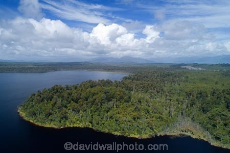 aerial;Aerial-drone;Aerial-drones;aerial-image;aerial-images;aerial-photo;aerial-photograph;aerial-photographs;aerial-photography;aerial-photos;aerial-view;aerial-views;aerials;bush;Drone;Drones;forest;forests;Hokitika;lake;Lake-Mahinapua;lakes;N.Z.;native-bush;native-forest;native-forests;native-tree;native-trees;native-woods;natural;nature;New-Zealand;NZ;Quadcopter-aerial;Quadcopters-aerials;Ruatapu;S.I.;SI;South-Is;South-Island;Sth-Is;Sth-Island;tree;trees;U.A.V.-aerial;UAV-aerials;West-Coast;Westland;wood;woods