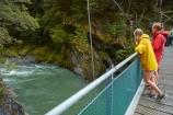 Beech-Forest;Blue-Pools;Blue-Pools-Track;Blue-Pools-Walk;Blue-River;bridge;bridges;brook;brooks;creek;creeks;female;females;foot-bridge;foot-bridges;footbridge;footbridges;girl;Haast-Pass;M.R.;Makarora;model-release;model-released;Mount-Aspiring-National-Park;MR;Mt-Aspiring-N.P.;Mt-Aspiring-National-Park;Mt-Aspiring-NP;N.Z.;national-park;national-parks;New-Zealand;NZ;Otago;pedestrian-bridge;pedestrian-bridges;people;person;river;rivers;S.I.;SI;South-Is;South-Island;Sth-Is;stream;streams;suspension-bridge;suspension-bridges;swing-bridge;swing-bridges;tourism;tourist;tourists;travel;water;West-Coast;Westland;wire-bridge;wire-bridges;woman;women