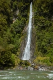 Beech-Forest;brook;brooks;calm;calmness;cascade;cascades;creek;creeks;;fall;falls;flow;forest;green;gush;Haast-Pass;Haast-River;Mount-Aspiring-National-Park;Mt-Aspiring-N.P.;Mt-Aspiring-National-Park;Mt-Aspiring-NP;N.Z.;national-park;national-parks;native-bush;natural;nature;New-Zealand;NZ;pass;passes;pour;river;rivers;S.I.;scene;scenic;SI;South-Is;South-Island;spill;Sth-Is;stream;streams;Thunder-Creek-Falls;tumble;water;water-fall;water-falls;waterfall;waterfalls;West-Coast;Westland;wet