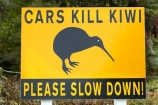 kiwi;Kiwi-sign;Kiwi-warning-sign;kiwis;N.Z.;New-Zealand;NZ;Okarito;road;road-signs;S.I.;SI;sign;signs;South-Is;South-Island;Sth-Is;unusual-road-sign;warnign-signs;warning-sign;West-Coast;Westland