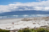 Beach;beaches;drift-wood;new-zealand;ocean;sea;south-island;tasman-sea;wave;waves;west-coast;westland;Westport