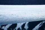 alp;alpine;alps;altitude;British-Columbia;British-Columbian-Rockies;calm;Canada;Canadian;Canadian-Cordillera;Canadian-Rockies;Canadian-Rocky-Mountain-Parks;Canadian-Rocky-Mountain-Parks-World-Heritage-Site;cold;freeze;freezing;freezing-lake;freezing-lakes;frozen;frozen-lake;frozen-lakes;high-altitude;ice;icy;icy-lake;icy-lakes;la-Colombie_Britannique;Moose-Lake;mount;Mount-Robson-Park;Mount-Robson-Provincial-Park;mountain;mountain-peak;mountainous;mountains;mountainside;mt;Mt-Robson-Park;Mt-Robson-Provincial-Park;mt.;Mt.-Robson-Park;Mt.-Robson-Provincial-Park;North-America;North-American-Cordillera;North-American-Rocky-Mountains-Range;placid;quiet;range;ranges;reflection;reflections;Rocky-Mountains;Rocky-Mountains-Range;season;seasonal;seasons;Selwyn-Ra;Selwyn-Range;serene;smooth;snow;snow-capped;snow_capped;snowcapped;snowy;still;tranquil;UN-world-heritage-area;UN-world-heritage-site;UNESCO-World-Heritage-area;UNESCO-World-Heritage-Site;united-nations-world-heritage-area;united-nations-world-heritage-site;water;Western-Canada;Western-Cordillera;white;winter;wintery;world-heritage;world-heritage-area;world-heritage-areas;World-Heritage-Park;World-Heritage-site;World-Heritage-Sites