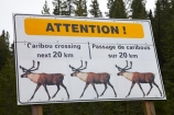 AB;Alberta;Albertas-Rockies;Canada;Canadian;Canadian-Cordillera;Canadian-Rockies;Canadian-Rocky-Mountain-Parks;Canadian-Rocky-Mountain-Parks-World-Heritage-Site;Caribou-sign;Caribou-signs;Caribou-warning-sign;Icefield-Parkway;Icefields-Parkway;Jasper-N.P.;Jasper-National-Park;Jasper-NP;national-park;national-parks;North-America;North-American-Cordillera;North-American-Rocky-Mountains-Range;Promenade-des-Glaciers;road-sign;road-signs;road_sign;road_signs;roads;roadsign;roadsigns;Rocky-Mountains;Rocky-Mountains-Range;sign;signs;symbol;symbols;UN-world-heritage-area;UN-world-heritage-site;UNESCO-World-Heritage-area;UNESCO-World-Heritage-Site;united-nations-world-heritage-area;united-nations-world-heritage-site;warn;warning;warning-sign;warning-signs;Western-Canada;Western-Cordillera;wildlife;wildlife-sign;wildlife-signs;wildlife-warning-sign;wildlife-warning-signs;world-heritage;world-heritage-area;world-heritage-areas;World-Heritage-Park;World-Heritage-site;World-Heritage-Sites;yellow-sign;yellow-signs