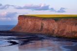 beach;beaches;bluff;bluffs;Britain;British-Isles;cliff;cliffs;coast;coastal;coastline;crop;crops;England;English;Europe;G.B.;GB;Great-Britain;N.E.-England;NE-England;North-East-England;North-Yorkshire;ocean;oceans;rape-field;rape-fields;rapeseed;rapeseed-field;rapeseed-fields;rapeseeds;Saltburn;Saltburn-by-the-Sea;Saltburn_by_the_Sea;sand;sandy;sea;seas;shore;shoreline;steep;U.K.;UK;United-Kingdom;yellow;yellow-field;yellow-fields;Yorkshire
