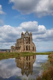 abandon;abandoned;abbeys;Benedictine-abbey;Britain;British-Isles;c.1220;calm;cathedral;cathedrals;character;christian;christianity;church;churches;circa-1220;derelict;dereliction;deserted;desolate;desolation;England;English;Europe;faith;G.B.;GB;gothic;Gothic-architecture;Grade-Listed-building;Great-Britain;N.E.-England;NE-England;North-East-England;North-Yorkshire;old;place-of-worship;places-of-worship;placid;quiet;reflection;reflections;religion;religions;religious;ruin;ruins;serene;smooth;spire;spires;still;stone-building;stone-buildings;tranquil;U.K.;UK;United-Kingdom;water;Whitby;Whitby-Abbey;Yorkshire