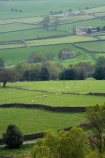 agricultural;agriculture;Britain;British-Isles;country;countryside;dry-stone-wall;dry-stone-walls;dry_stone-wall;dry_stone-walls;drystone-wall;drystone-walls;England;English-countryside;Europe;farm;farming;farmland;farms;Fellbeck;fence;fence-line;fence-lines;fence_line;fence_lines;fenceline;fencelines;fences;field;fields;G.B.;GB;grass;Great-Britain;green;heritage;historic;meadow;meadows;North-Yorkshire;Northern-England;paddock;paddocks;pasture;pastures;Pateley-Bridge;rock-wall;rock-walls;rural;stone-fence;stone-fences;stone-wall;stone-walling;stone-wallings;stone-walls;tradition;traditional;U.K.;UK;United-Kingdom;Yorkshire;Yorkshire-countryside;Yorkshire-Dales;Yorkshire-Farm;Yorkshire-Farmland;Yorkshire-Farmlands;Yorkshire-Farms