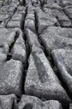 Britain;British-Isles;England;Europe;formation;formations;G.B.;GB;geological;geological-formation;geological-formations;geology;Great-Britain;Limestone;limestone-formation;limestone-formations;Limestone-Pavement;Malham;Malham-Cove;natural;natural-landscape;natural-landscapes;natural-limestone-formation;North-Yorkshire;Northern-England;pattern;patterns;rock;rock-formation;rock-formations;rocks;stone;U.K.;UK;United-Kingdom;unusual-natural-feature;unusual-natural-features;Yorkshire;Yorkshire-Dales;Yorkshire-Dales-National-Park