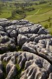 Britain;British-Isles;England;Europe;formation;formations;G.B.;GB;geological;geological-formation;geological-formations;geology;Great-Britain;Limestone;limestone-formation;limestone-formations;Limestone-Pavement;Malham;Malham-Cove;National-Trail;natural;natural-landscape;natural-landscapes;natural-limestone-formation;North-Yorkshire;Northern-England;rock;rock-formation;rock-formations;rocks;stone;The-Pennine-Way;U.K.;UK;United-Kingdom;unusual-natural-feature;unusual-natural-features;Yorkshire;Yorkshire-Dales;Yorkshire-Dales-National-Park