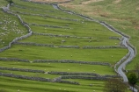 agricultural;agriculture;Britain;British-Isles;country;countryside;dry-stone-wall;dry-stone-walls;dry_stone-wall;dry_stone-walls;drystone-wall;drystone-walls;England;English-countryside;Europe;farm;farming;farmland;farms;fence;fence-line;fence-lines;fence_line;fence_lines;fenceline;fencelines;fences;field;fields;G.B.;GB;Great-Britain;heritage;historic;livestock;Malham;meadow;meadows;narrow-lane;narrow-lanes;narrow-road;narrow-roads;North-Yorkshire;Northern-England;paddock;paddocks;pasture;pastures;rock-wall;rock-walls;rural;sheep;stock;stone-fence;stone-fences;stone-wall;stone-walling;stone-wallings;stone-walls;tradition;traditional;U.K.;UK;United-Kingdom;Yorkshire;Yorkshire-countryside;Yorkshire-Dales;Yorkshire-Dales-National-Park;Yorkshire-Farm;Yorkshire-Farmland;Yorkshire-Farmlands;Yorkshire-Farms