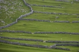 agricultural;agriculture;Britain;British-Isles;country;countryside;dry-stone-wall;dry-stone-walls;dry_stone-wall;dry_stone-walls;drystone-wall;drystone-walls;England;English-countryside;Europe;farm;farming;farmland;farms;fence;fence-line;fence-lines;fence_line;fence_lines;fenceline;fencelines;fences;field;fields;G.B.;GB;Great-Britain;heritage;historic;livestock;Malham;meadow;meadows;North-Yorkshire;Northern-England;paddock;paddocks;pasture;pastures;rock-wall;rock-walls;rural;sheep;stock;stone-fence;stone-fences;stone-wall;stone-walling;stone-wallings;stone-walls;tradition;traditional;U.K.;UK;United-Kingdom;Yorkshire;Yorkshire-countryside;Yorkshire-Dales;Yorkshire-Dales-National-Park;Yorkshire-Farm;Yorkshire-Farmland;Yorkshire-Farmlands;Yorkshire-Farms
