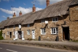 8034;Abbotsbury;britain;building;buildings;cottages;dorset;england;G.B.;GB;grass-roof;great-britain;heritage;historic;historic-building;historic-buildings;historical;historical-building;historical-buildings;history;kingdom;narrow-street;narrow-streets;old;road;roads;Rodden-Row;roof;roofing-material;roofs;rooves;row-of-cottages;row-of-houses;stone-buidling;stone-buildings;straw-roof;straw-rooves;street;streets;thatch;thatched;thatched-cottage;thatched-cottages;thatched-house;thatched-houses;thatched-roof;thatched-roofs;thatched-rooves;thatching;tradition;traditional;traditional-thatched-cottage;traditional-thatched-cottages;U.K.;uk;united;united-kingdom;village;West-Dorset