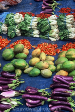 vetgetable;markets;food;egg-plant;egg-plants;mango;mangoes;aubergine;aubergines;viti-levu;color;colour;colors;colours;fruit;fruits;produce;selling;sell;shopping;stall;stalls;travel;travels;world-travel;world-locations;variety;chilli;chillies;silver-beet;row;rows;silver-beets