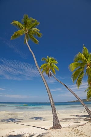 beach;beaches;coast;coastal;coastline;coastlines;coasts;Fij;Fiji;Fiji-Islands;foreshore;hammock;hammocks;holiday;holiday-resort;holiday-resorts;holidays;Malolo-Lailai-Is;Malolo-Lailai-Island;Malololailai-Is;Malololailai-Island;Mamanuca-Group;Mamanuca-Is;Mamanuca-Island-Group;Mamanuca-Islands;Mamanucas;ocean;Pacific;Pacific-Island;Pacific-Islands;palm;palm-frond;palm-fronds;palm-tree;palm-trees;palms;paradise;Plantation-Is;Plantation-Is-Resort;Plantation-Island;Plantation-Island-Resort;resort;resort-hotel;resort-hotels;resorts;sand;sandy;sea;shore;shoreline;shorelines;shores;South-Pacific;tropical-island;tropical-islands;vacation;vacations;water